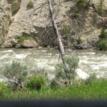 Raging Yellowstone River